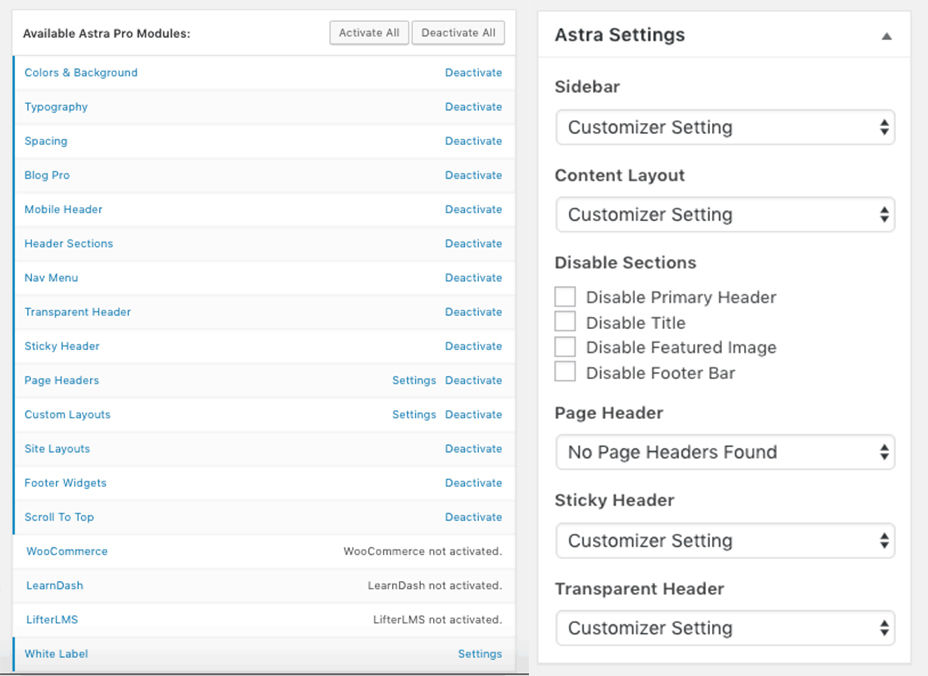 Astra Theme review Pro-modules and settings