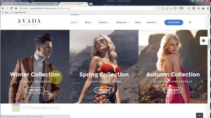 Avada Theme review webshops