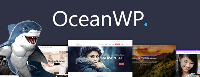 Best Woocommerce theme OceanWP