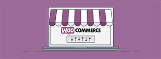 10 best Woocommerce themes 2020