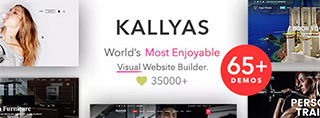 Kallyas theme review, great for webshops and web sites