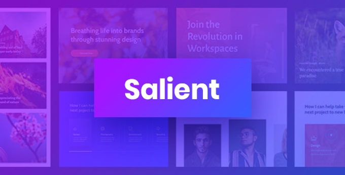 Salient Theme review